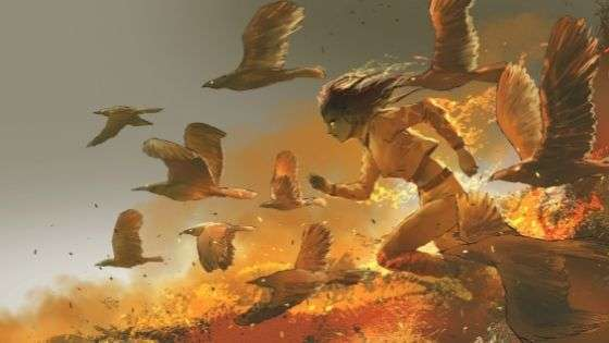 Firebirds Short Story - Image of Girl Running Through a Field with Birds Flying With Her